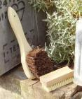 Nailbrush - basic beech
